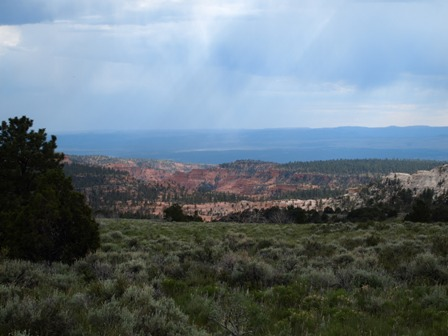 Dixie National Forest casto canyon