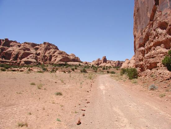 Bull Canyon Trail Moab Utah