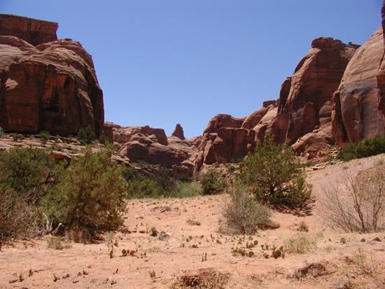 Day Canyon Near Bull Canyon Moab UT