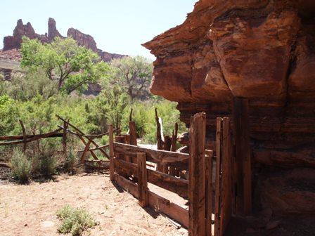 Desert Corral