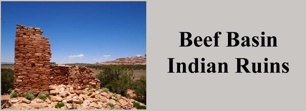 Beef Basin Indian Ruins and UTV Trails